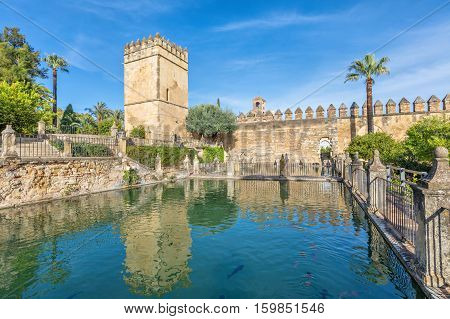 Water pond in gardens of Alcazar of the Christian Monarchs in Cordoba Andalusia Spain.