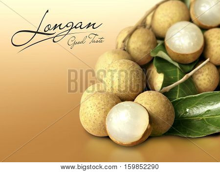 Longan on orange solid background with text