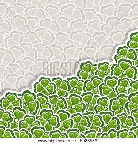 Vector Clover Pattern for St Patrick's Day, Green Shamrock poster with border for greeting text, ornament clover foliage, gray shamrock pattern, floral background irish patrick trefoil, green art lawn
