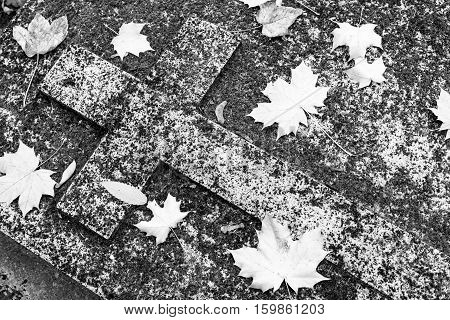 Old forgotten christian grave, stone carved cross covered with moss and autumn leaves. Black and white image.