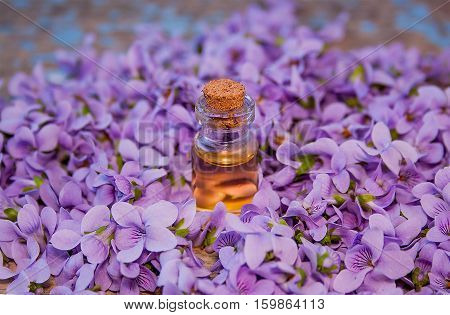 Flowers violet and a bottle of essential oil on a rustic wooden background. The concept of a healthy lifestyle, organic cosmetics, self-care, spa treatments, skin care. Eco friendly.