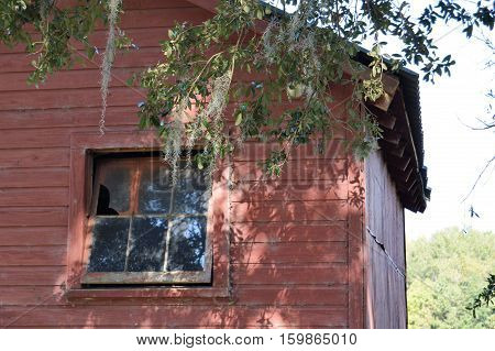 broken window pane glass red barn Spanish moss tree