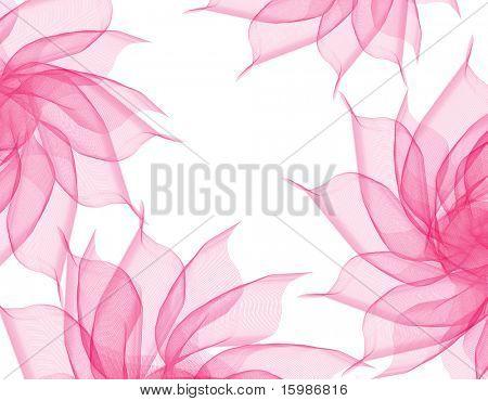 beautiful flowers romantic pink veil on white