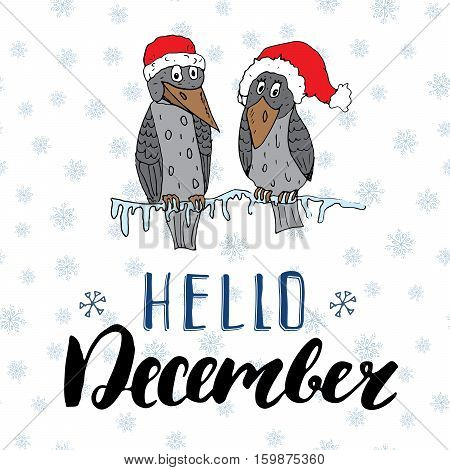 Winter season lettering quote hello december. Hand drawn doodle birds on frozen tree branch in traditional red hats. Vector illustration