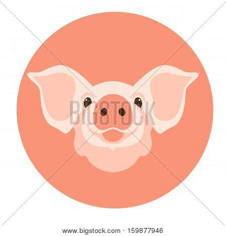 pig head  face vector illustration style Flat