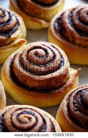 Cinnamon roll bread, buns, rolls. Homemade bakery. Sweet Homemade christmas baking. Kanelbulle - swedish dessert
