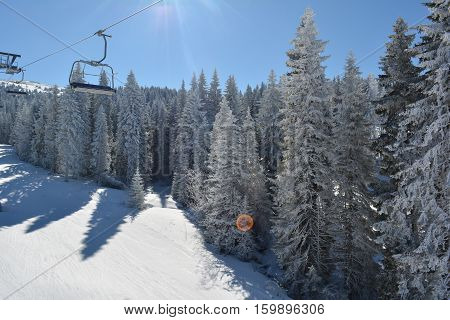 Empty chairs on cable going down frozen fir forest and ski against sun with intended lens flare view from ski lift