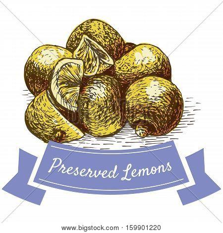 Preserved Lemons colorful illustration. Vector illustration of israeli cuisine.