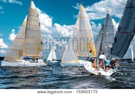 Sailing yacht race. Team athletes participating in the sailing competition