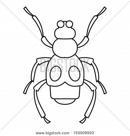Beetle insect icon. Outline illustration of beetle insect vector icon for web