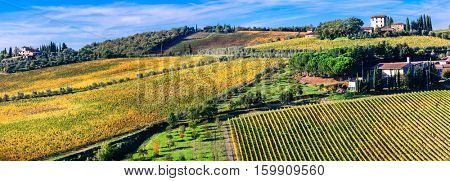 Beautiful Tuscany countryside - vast vineyards in Chianti region of Italy