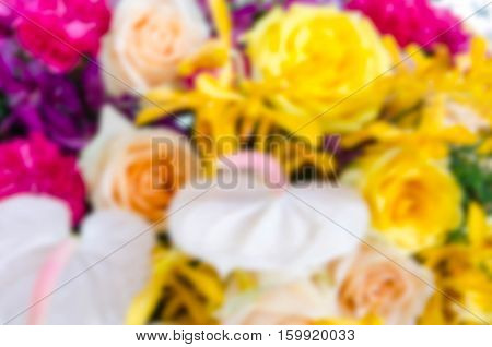 Bouquet of orange roses soft blur background in vintage pastel tones.