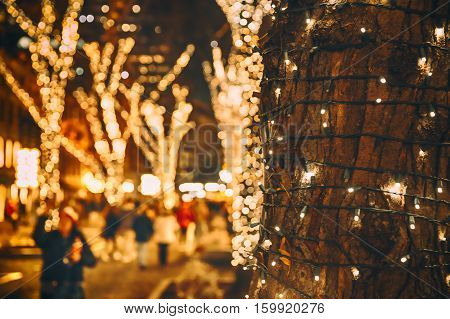 Christmas lights on the tree. the Christmas lights on the tree trunk, closeup. blurred background city street with Christmas illuminations