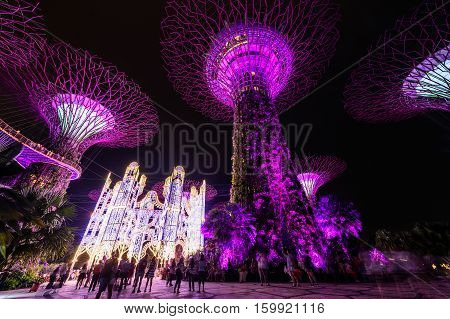 SINGAPORE - NOVEMBER 22 2016: Supertrees at Gardens by the Bay. The tree-like structures are fitted with environmental technologies that mimic the ecological function of trees.