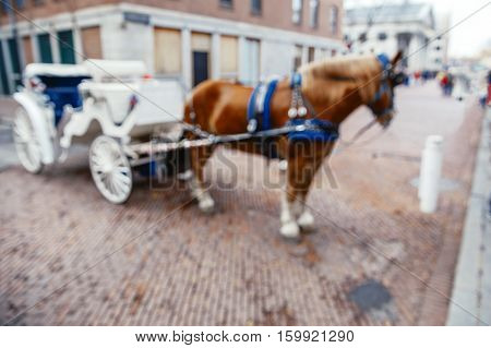 white carriage with a horse. horse drawn carriage. blurred background due to the concept