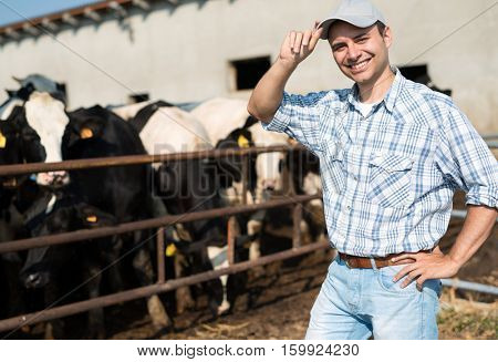 Smiling breeder in front of his cows