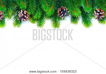 Christmas Tree with Cones border isolated on a White background. New Year holiday evergreen tree, Xmas green framework