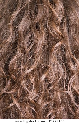 texture of long brown hair
