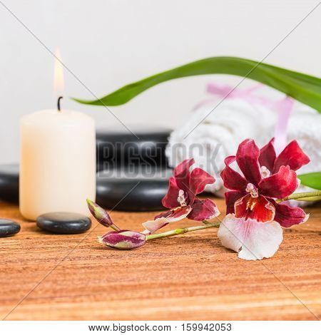 Spa Composition Of Orchid Flower, Cambria, Towels, Zen Stones And Candle On Wooden Background, Close