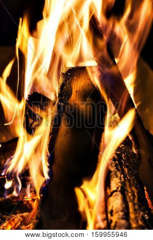 Bonfire, Fire, Logs Close Up At Night