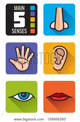 Five senses, nose, hand, mouth, eye, ear vector icons set. Set of human senses smell sight, hearing taste and touch illustration