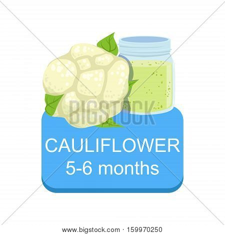 Recommended Time To Feed The Baby With Fresh Cauliflower Cartoon Info Sticker With Fresh Vegetable And Puree In Jar. Flat Vector Illustration With Healthy Food Choice For Small Child According To Age.