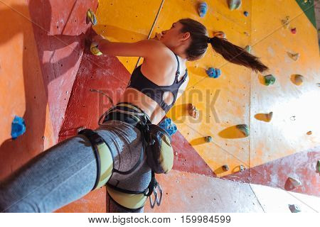 Life with sport. Delighted young active woman training hard in climbing gym while using equipment and climbing up the wall.