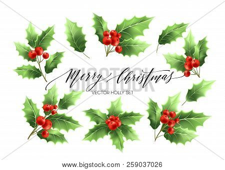 Christmas Holly Branches Realistic Illustrations Set. Green Holly Twigs With Red Berries. Merry Chri