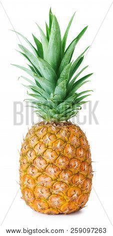 Single Ripe Pineapple Isolated On White Background