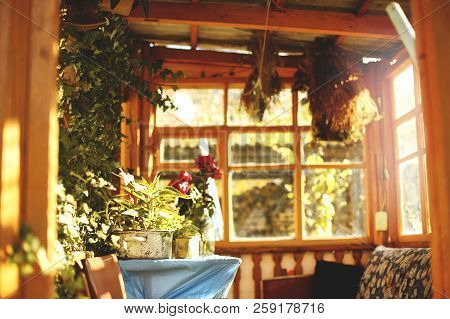 Colorful Autumn Flowers In The Old Summerhouse