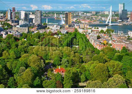View of Rotterdam city and Het Park and the Erasmus bridge Erasmusbrug over Nieuwe Maas river  from Euromast
