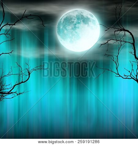Spooky Halloween background with old trees silhouettes and shining moon.