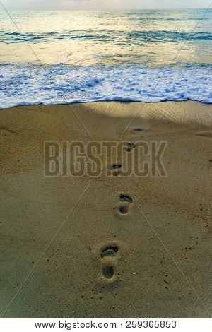 Beach travel - woman relaxing walking on sand beach leaving footprints in the sand. Closeup detail of female feet and legs on golden sand