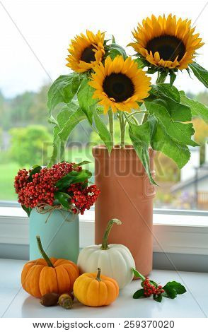 A Collection Of Fall Flowers, Firethorn Berries And Miniature Pumpkins Beside A Window In Vertical F
