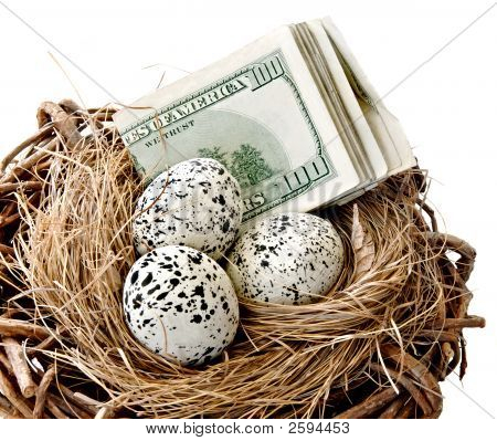 Paper currency and eggs in a nest. poster