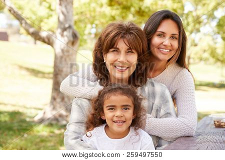 Three generations of women at a family picnic in a park