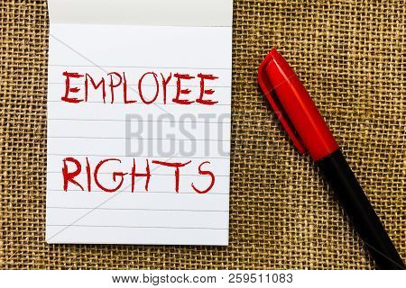 Handwriting text Employee Rights. Concept meaning All employees have basic rights in their own workplace poster