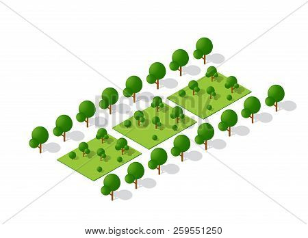 Isometric 3d Trees Forest Camping Nature Elements