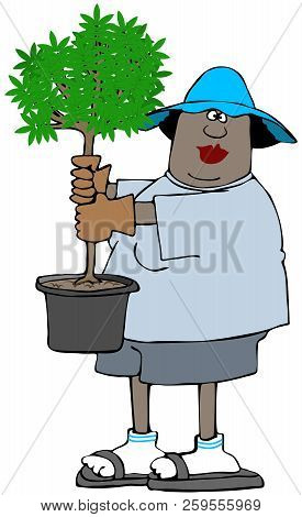 Illustration Of A Black Woman Gardener Holding A Small Tree In A Pot.