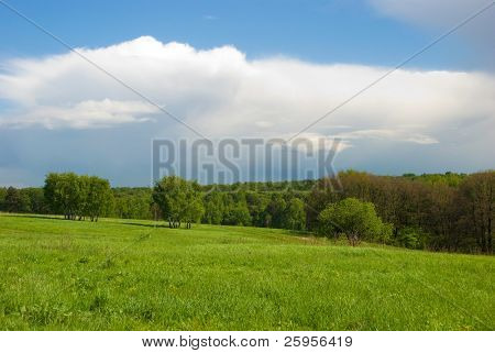 Green meadow and forest landscape with beautiful sky above