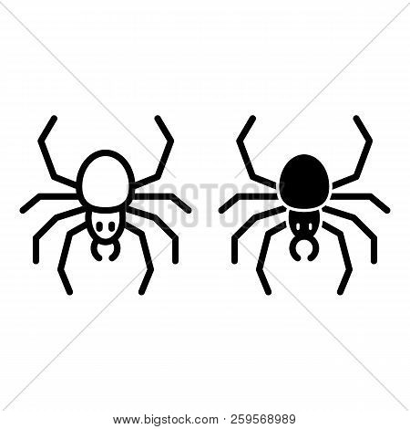 Spider Line And Glyph Icon. Arachnid Vector Illustration Isolated On White. Insect Outline Style Des