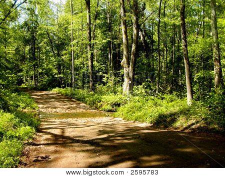Rural Stream Crossing