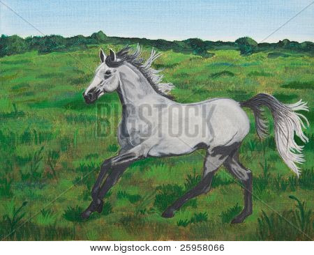 Acrylic painting of a gray horse cantering on a meadow/pasture poster