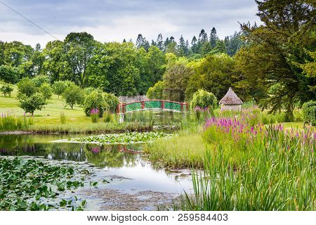 Beautiful Country Garden With Bridge And Pond
