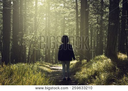 Little Girl Lost In Forest Fantasy. Young Baby Girl Lost In Forest Nature Fantasy. Girl Lost In Fant