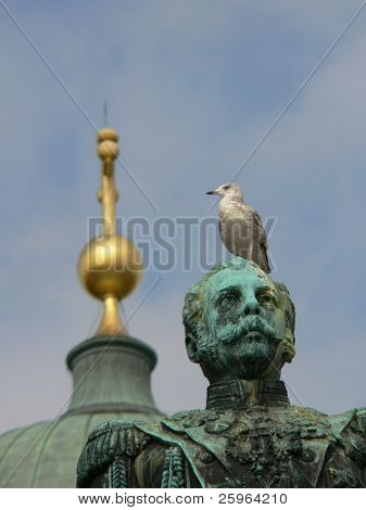 Seagul on Alexander II in Helsinki, Finland, Europe.