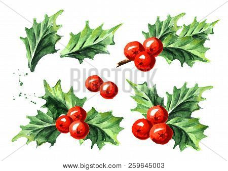 Christmas And New Year Symbol Decorative Holly Berry Set. Watercolor Hand Drawn Illustration, Isolat