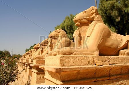 Avenue of ram-headed sphinxes