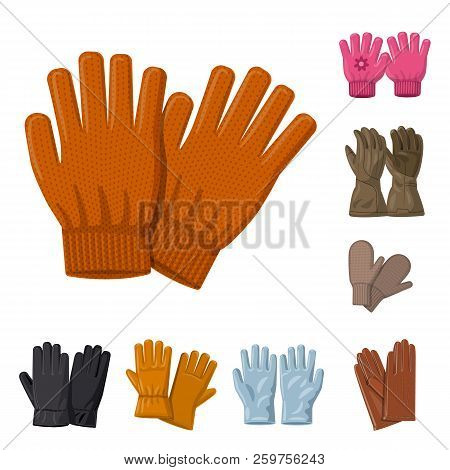 Vector Illustration Of Glove And Winter Logo. Collection Of Glove And Equipment Stock Vector Illustr