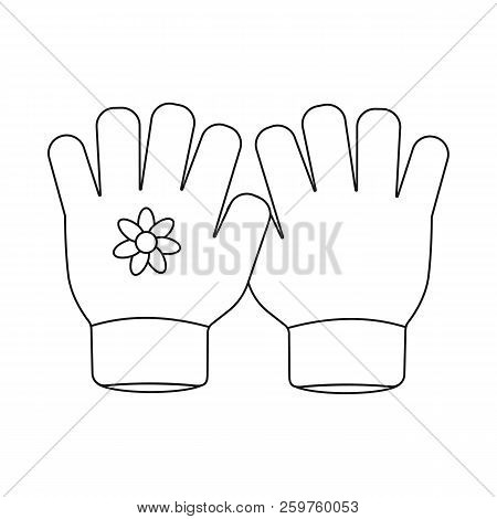 Isolated Object Of Glove And Winter Sign. Set Of Glove And Equipment Stock Vector Illustration.